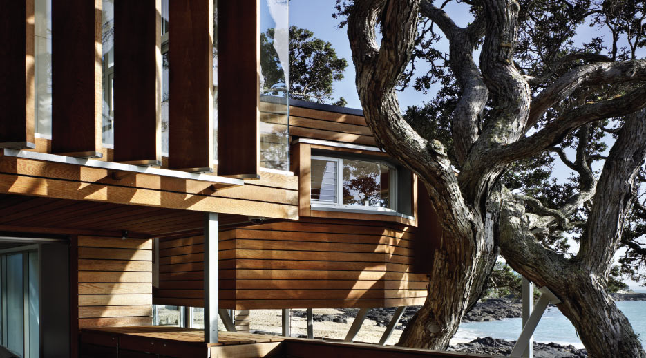Natural Architecture – the Design of a Tree House