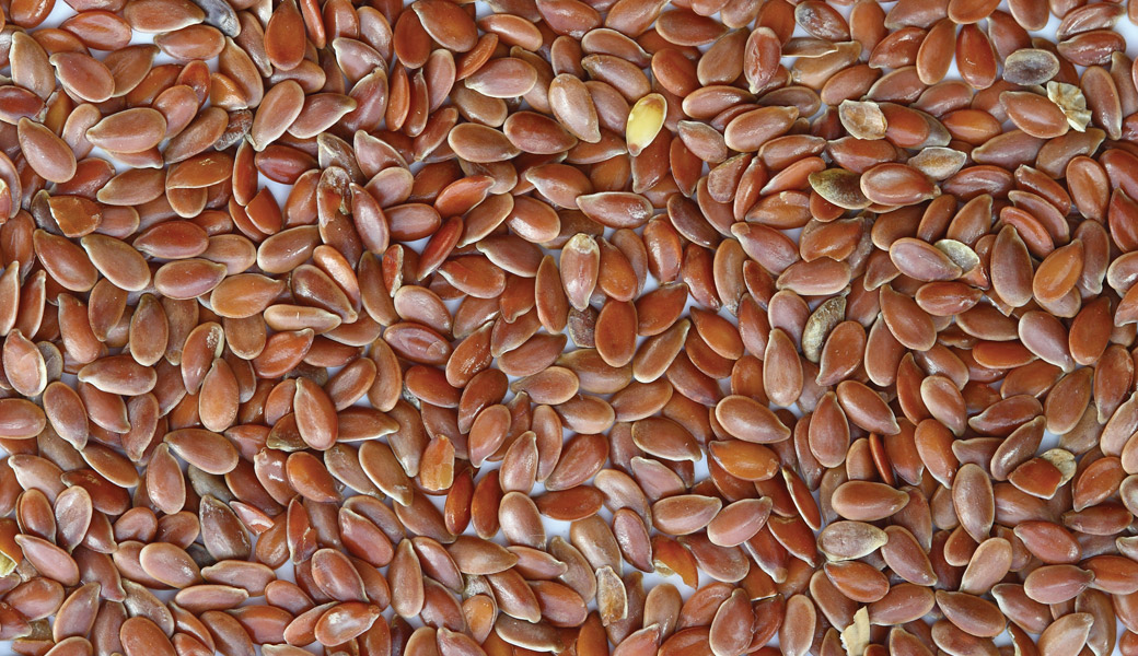 Brown-Flax-Seeds
