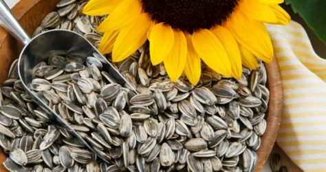Sunflower-Seeds-Scoop