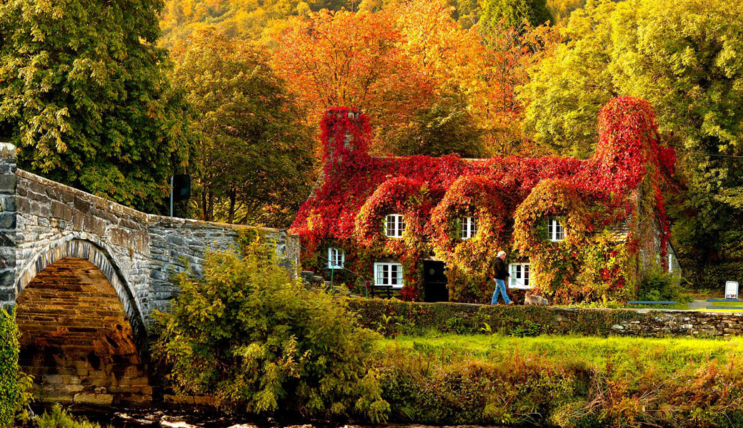 Autumn-House-Bridge-amazing