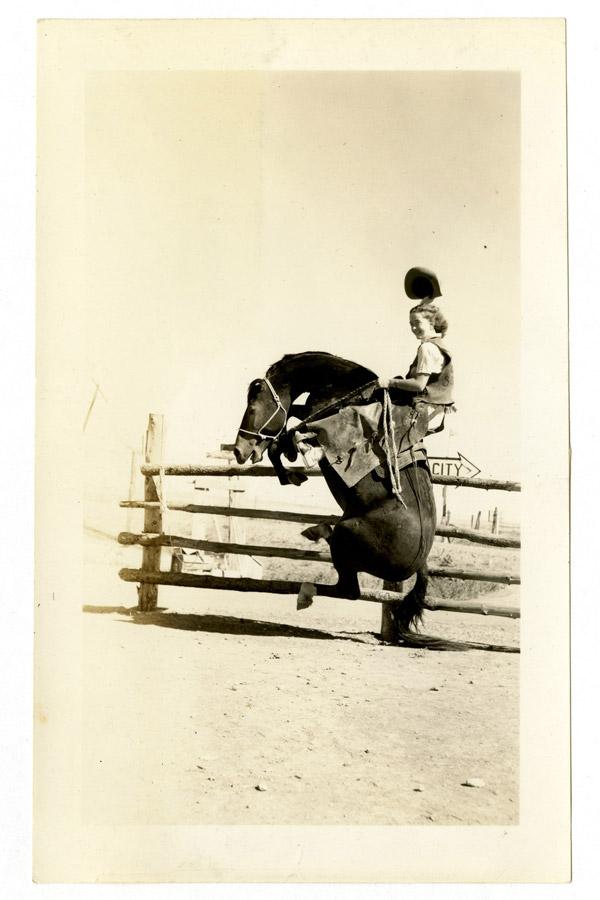 Dangerous-Women-Horse