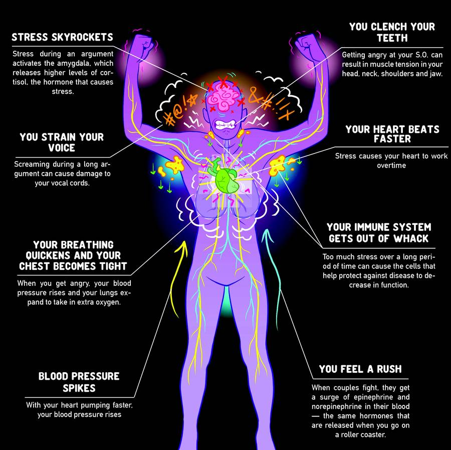 Your body when you're angry infographic