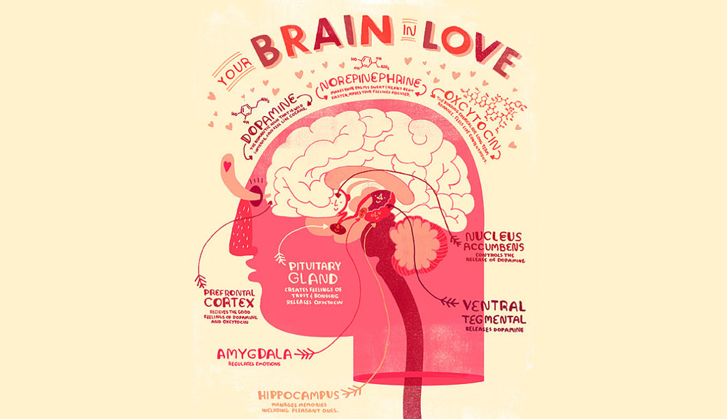 brain in love
