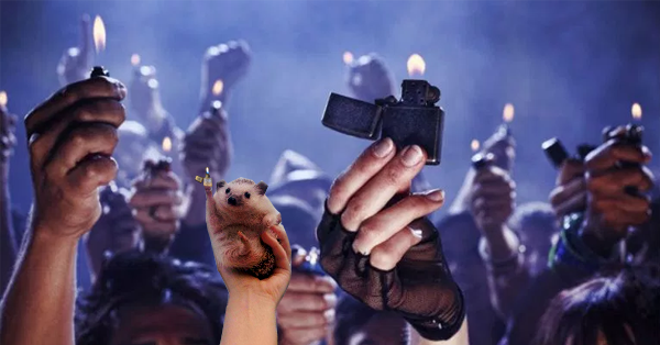 Cute Triumphant hedgehog photoshop (1)