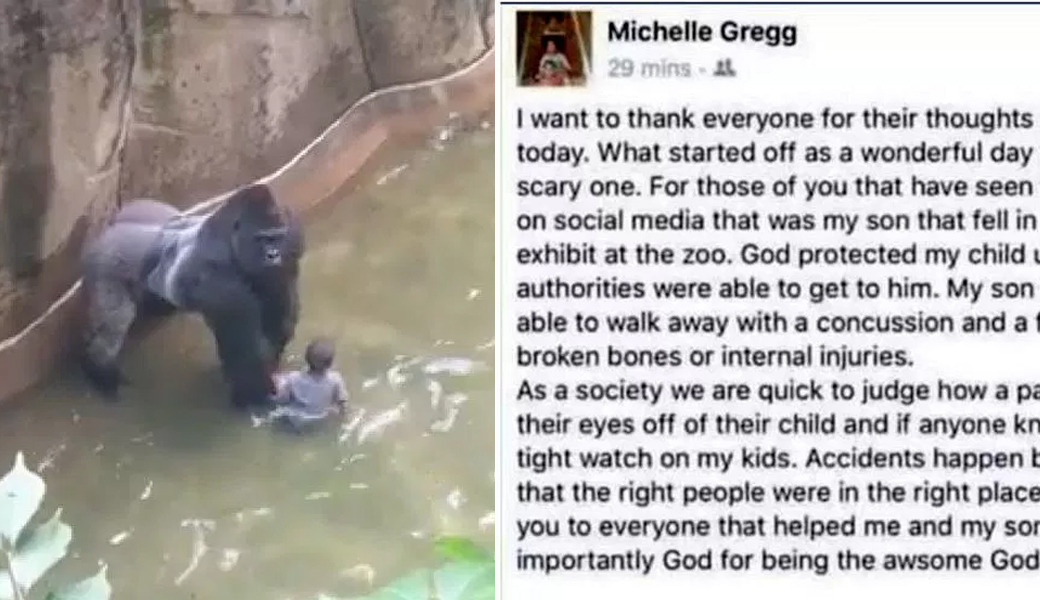 mom-letter-harambe-m2woman
