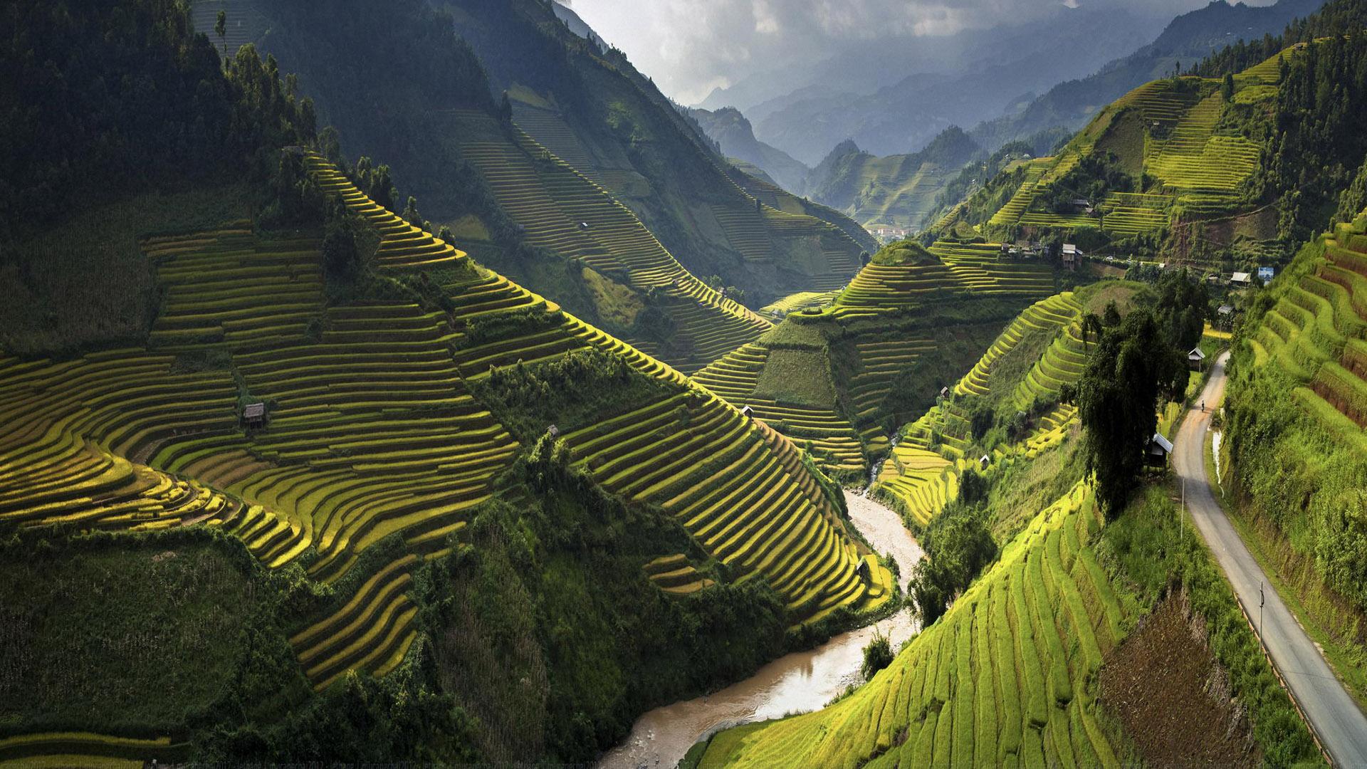 Vietnam-beauty