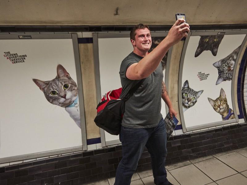 cat-ads-underground-subway-metro-london-1