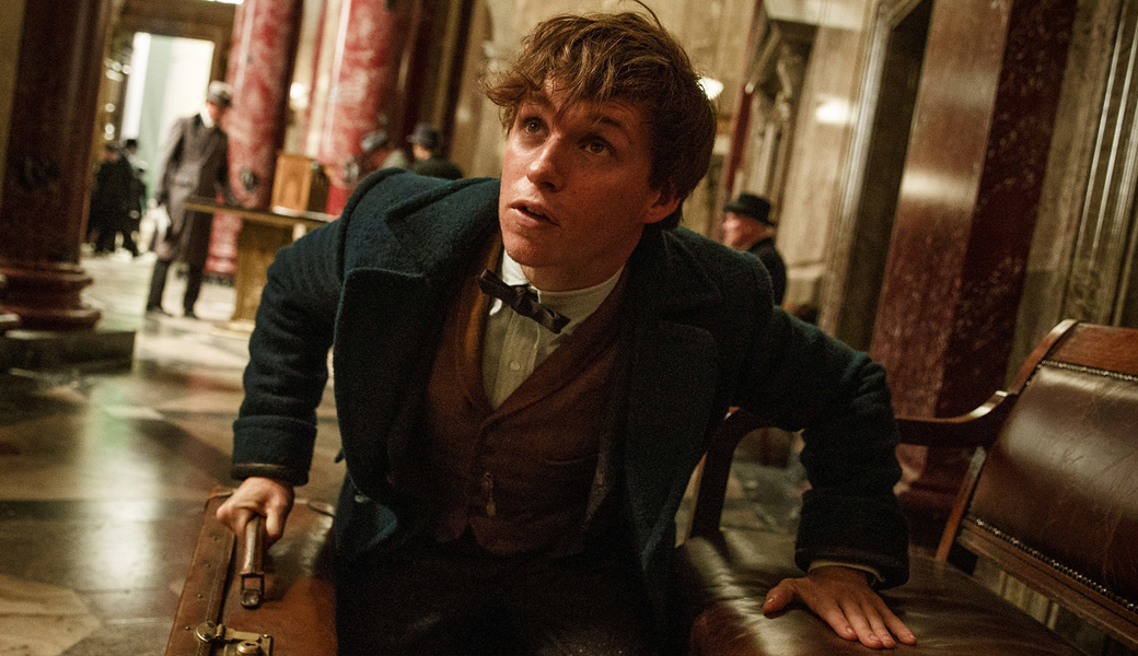 fantastic-beasts-and-where-to-find-them-what-to-expect