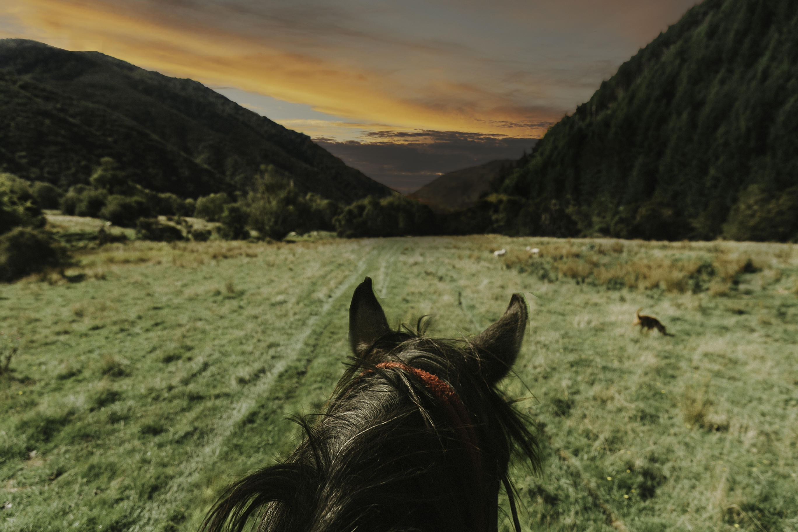Choice Hotels TravelGrammer - Horseback tour in Nelson by Jenny Gao2