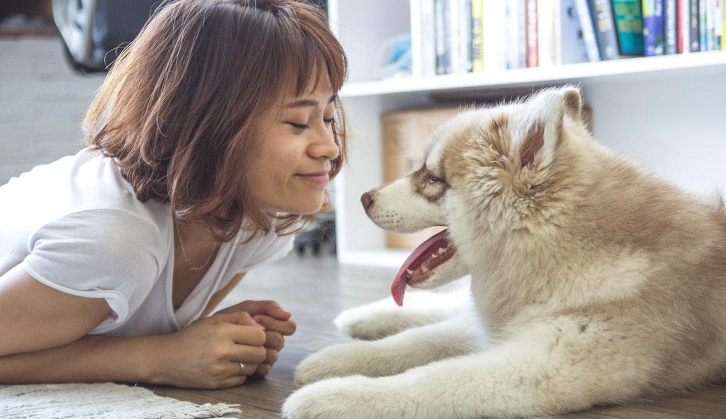 Pets as starter children
